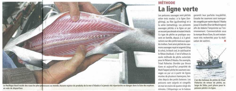 Salmon Belly article in French