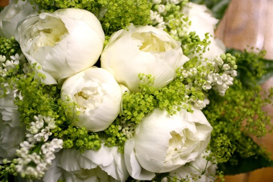 Whte peonies and greens.jpg