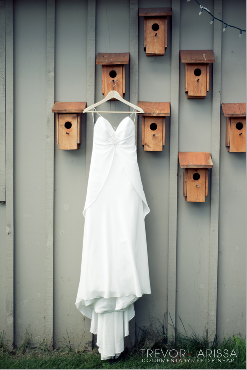 DianaDaveBB_WeddingSerenityRanch04.jpg