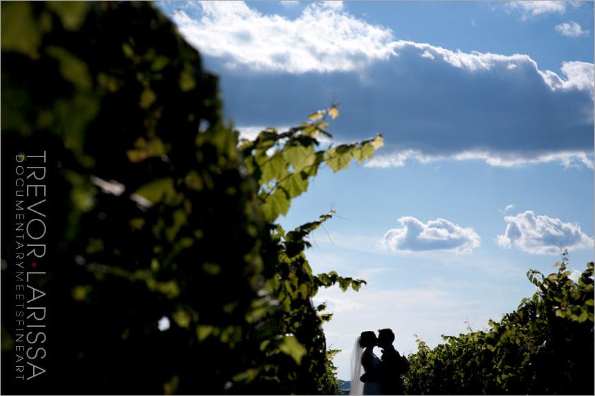 TLphoto_winerywedding28.jpg