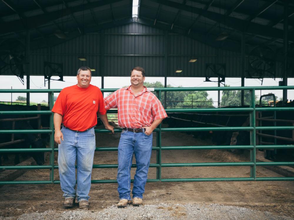 Black Hawk Farms | American Waygu Beef