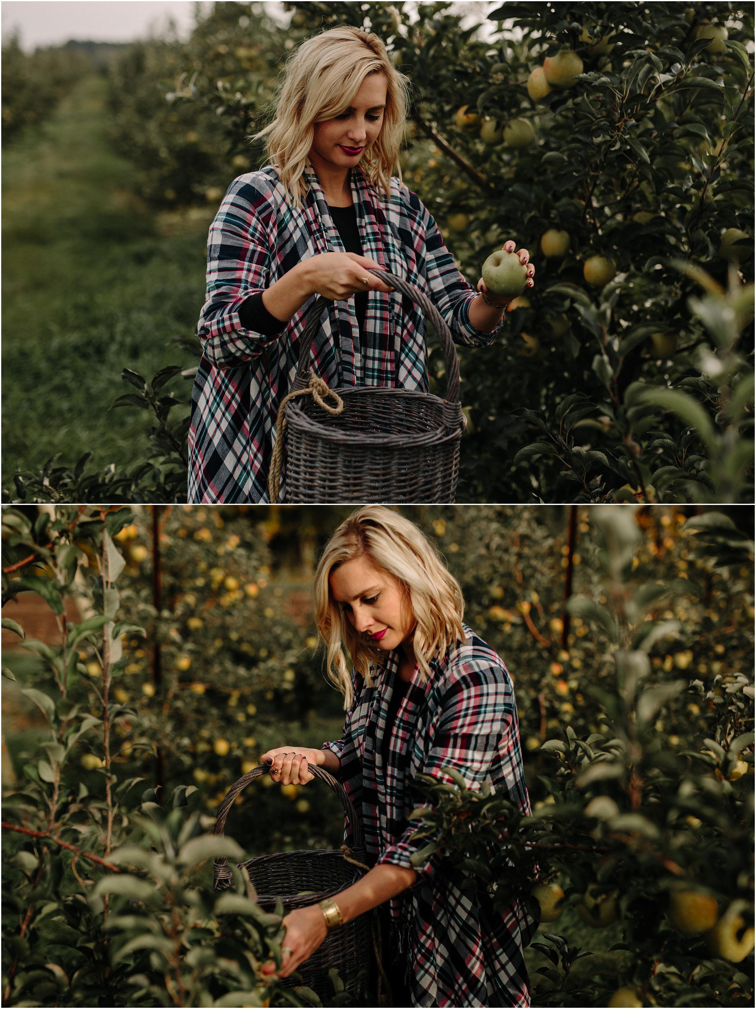garwood.apple.orchard-25.jpg