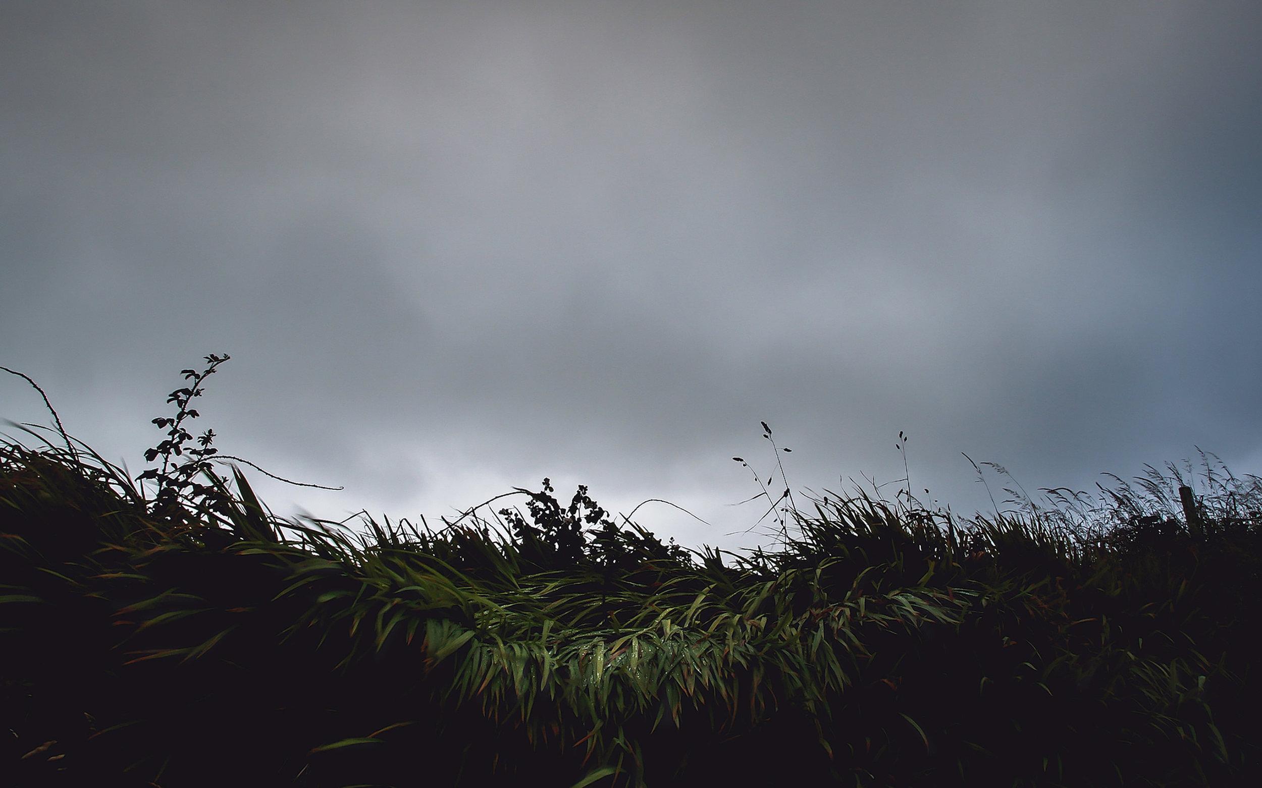 the prairie darkroom.jpg