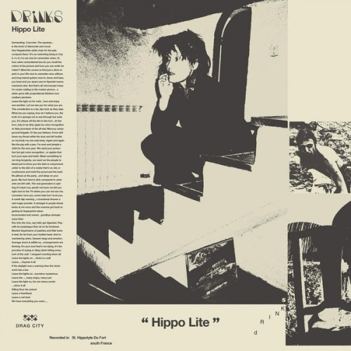102491-hippo-lite.jpg