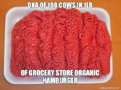 dna-of-100-cows.jpg