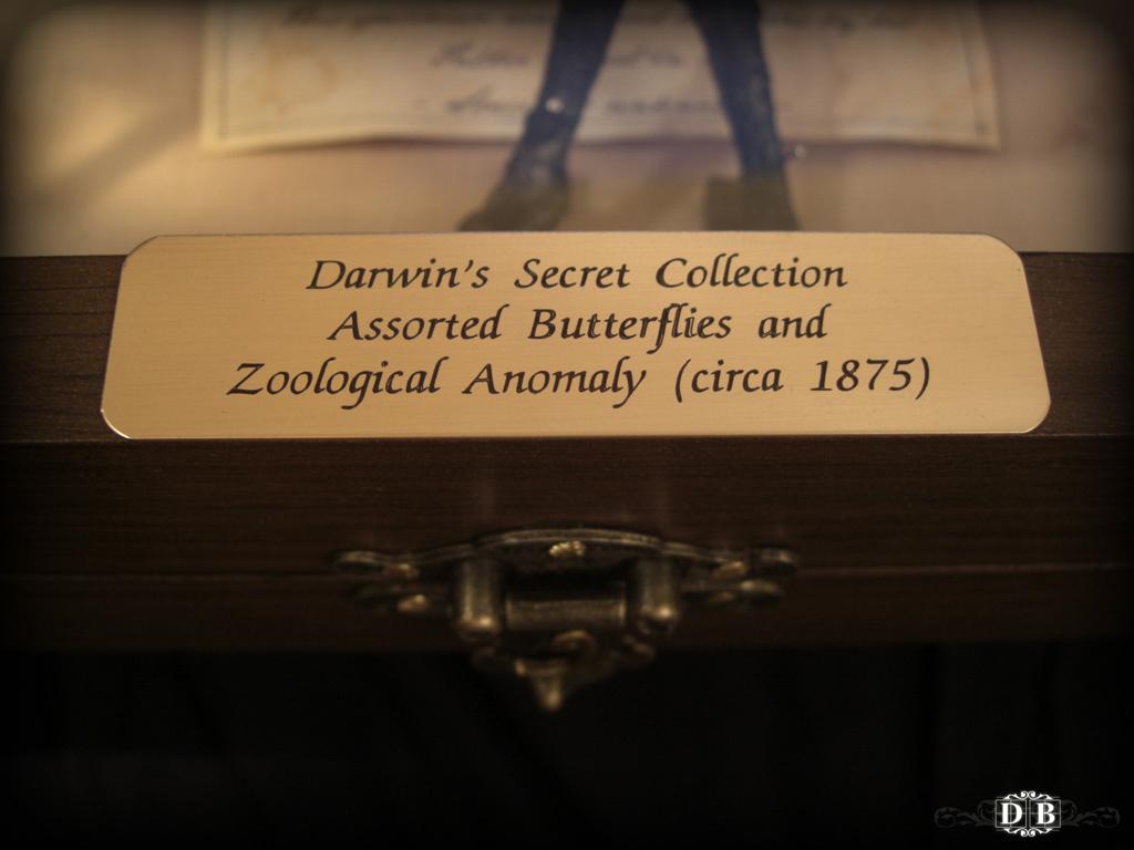 Darwins_Secret_13.jpg