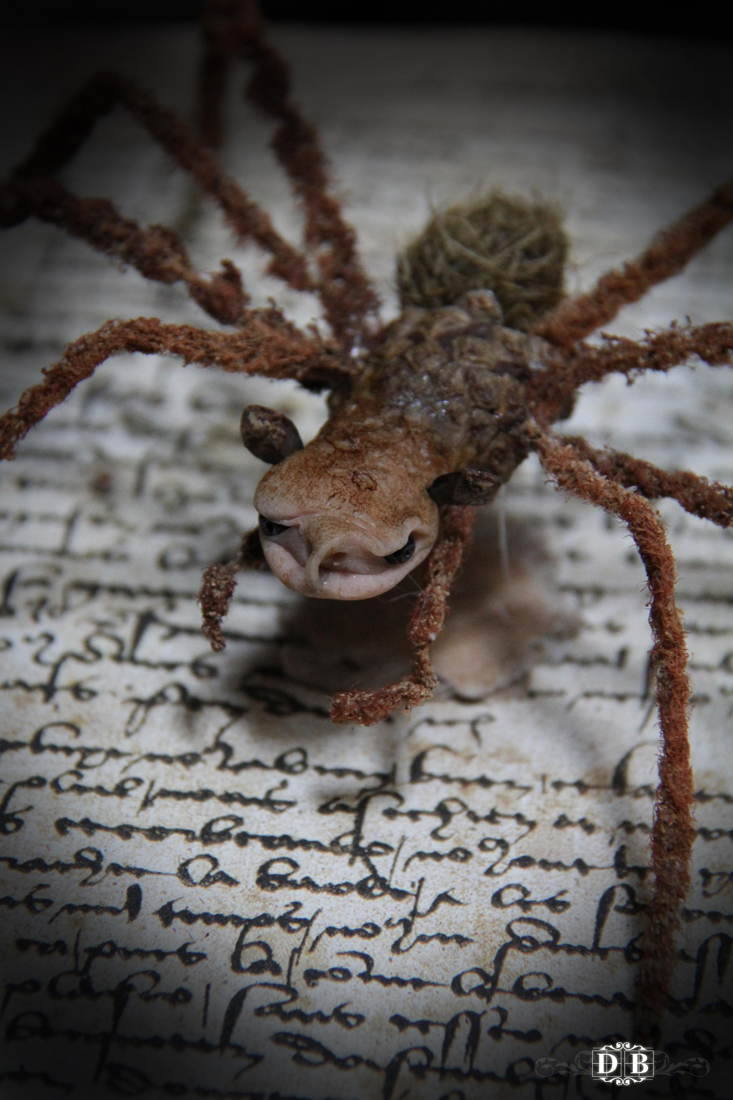 Spiderling_4.jpg