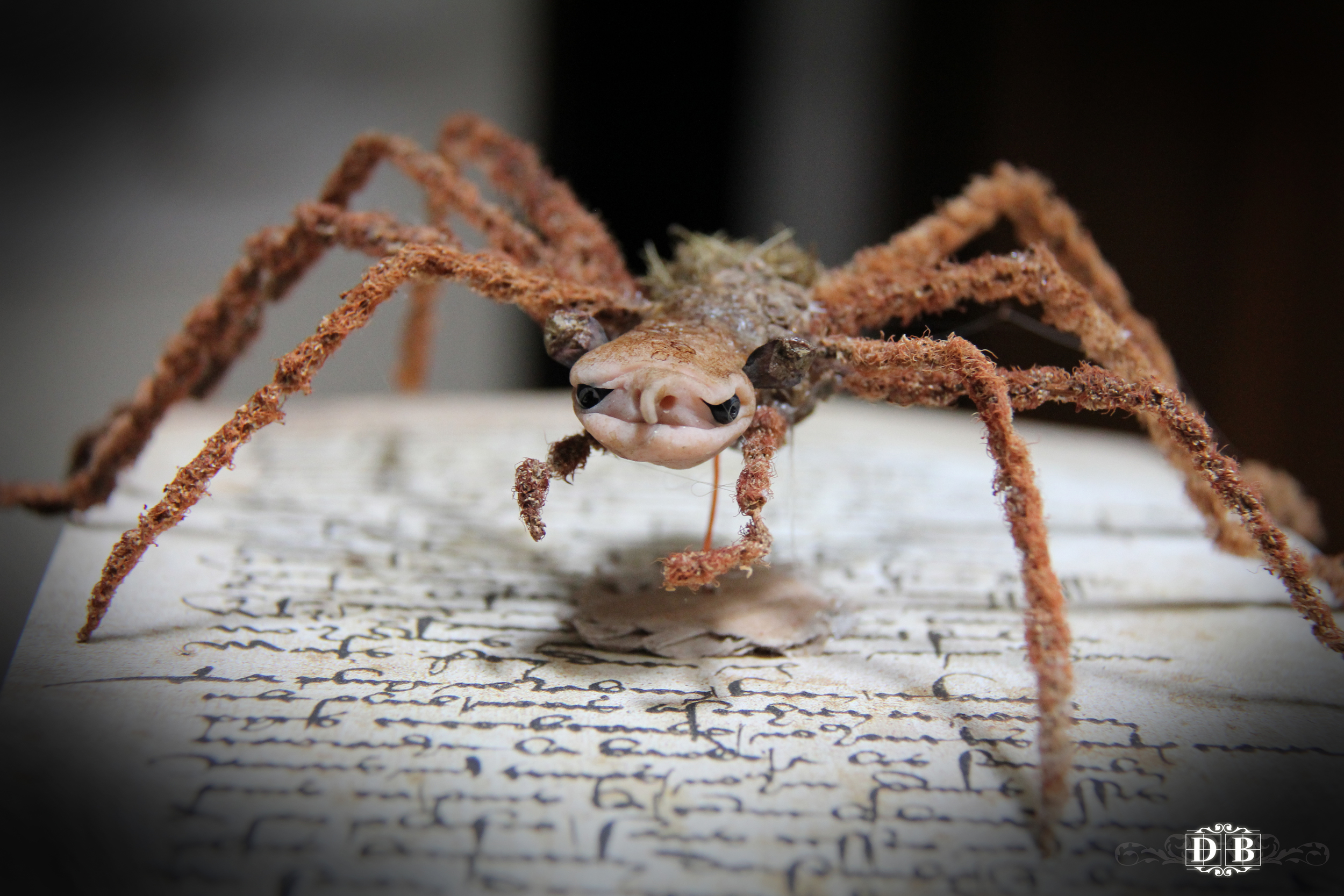 Spiderling_5.jpg