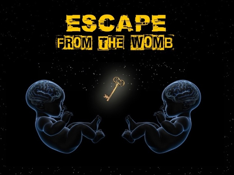 Womb Escape Game