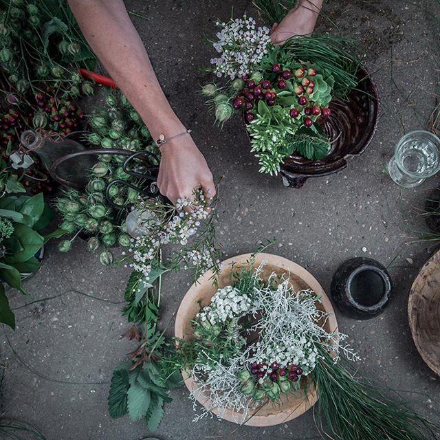der pranzl wünscht euch einen schönen Wochenstart. 📷 @mani_peric #interior #derpranzl #blumen #flowersandmore #fairtrade #minimalistic #ennstal #irdning #hortensie #hortensien #hydrangeamacrophylla #topshot #plants #servusmagazin