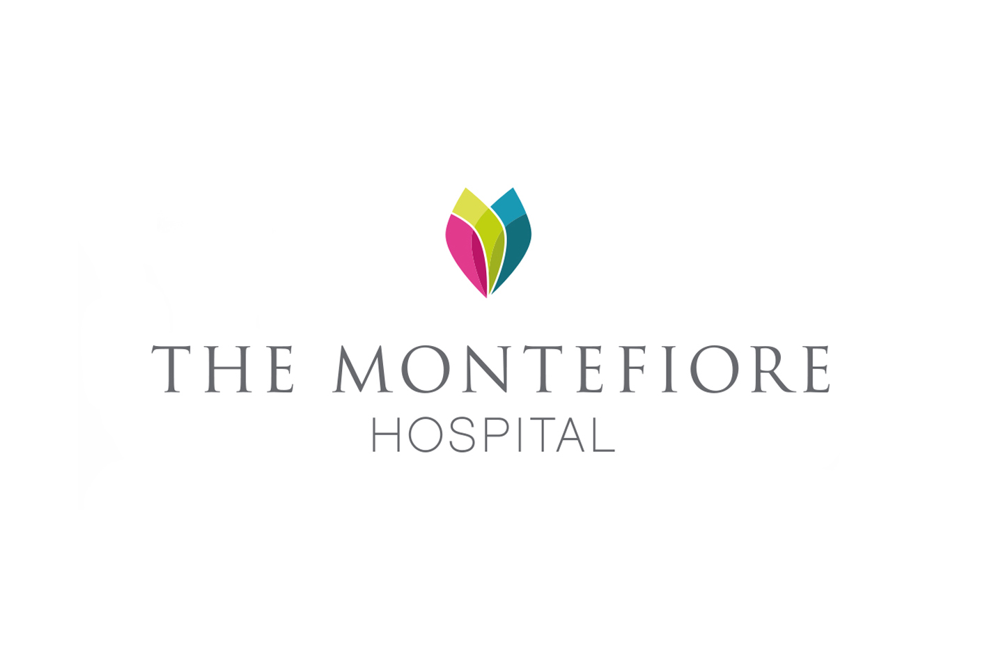 The Montefiore Hospital  Main branding for the Spire Healthcare group of private hospitals.