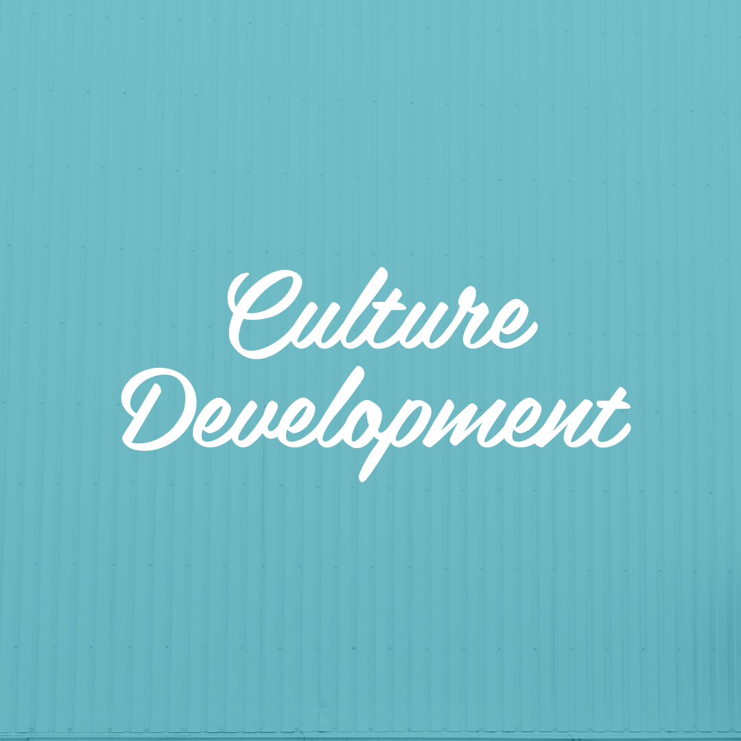 CULTURE DEVELOPMENT STRATEGY - Is your company culture on point? Culture is the beginning and end of finding and retaining prime talent. If yours needs a health check, we can help.