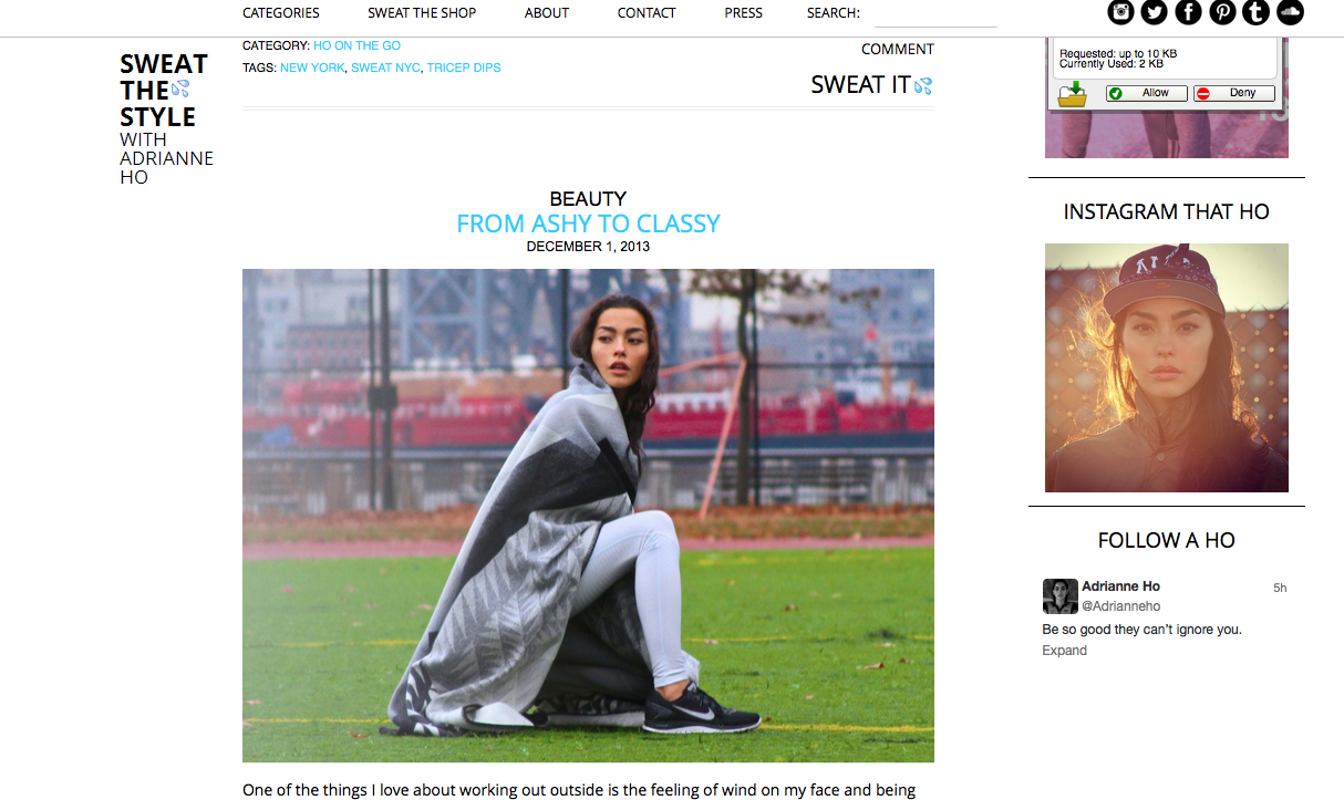 SWEAT THE STYLE 2013-12-04 at 00.46.06.png