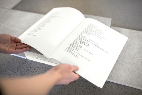 Pine Script For Loop