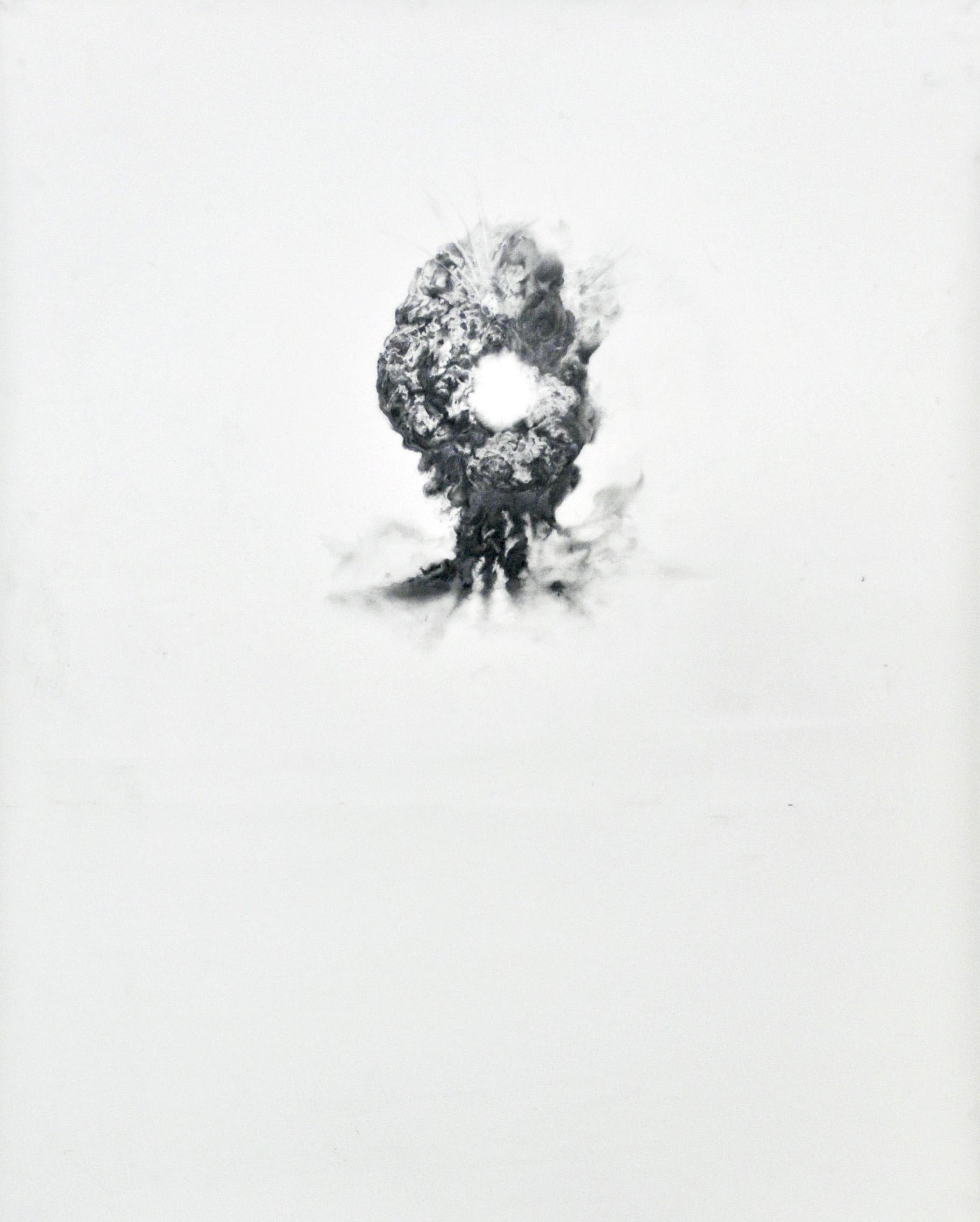 "Wholes , Graphite on mylar, 36""x28"", 2015"
