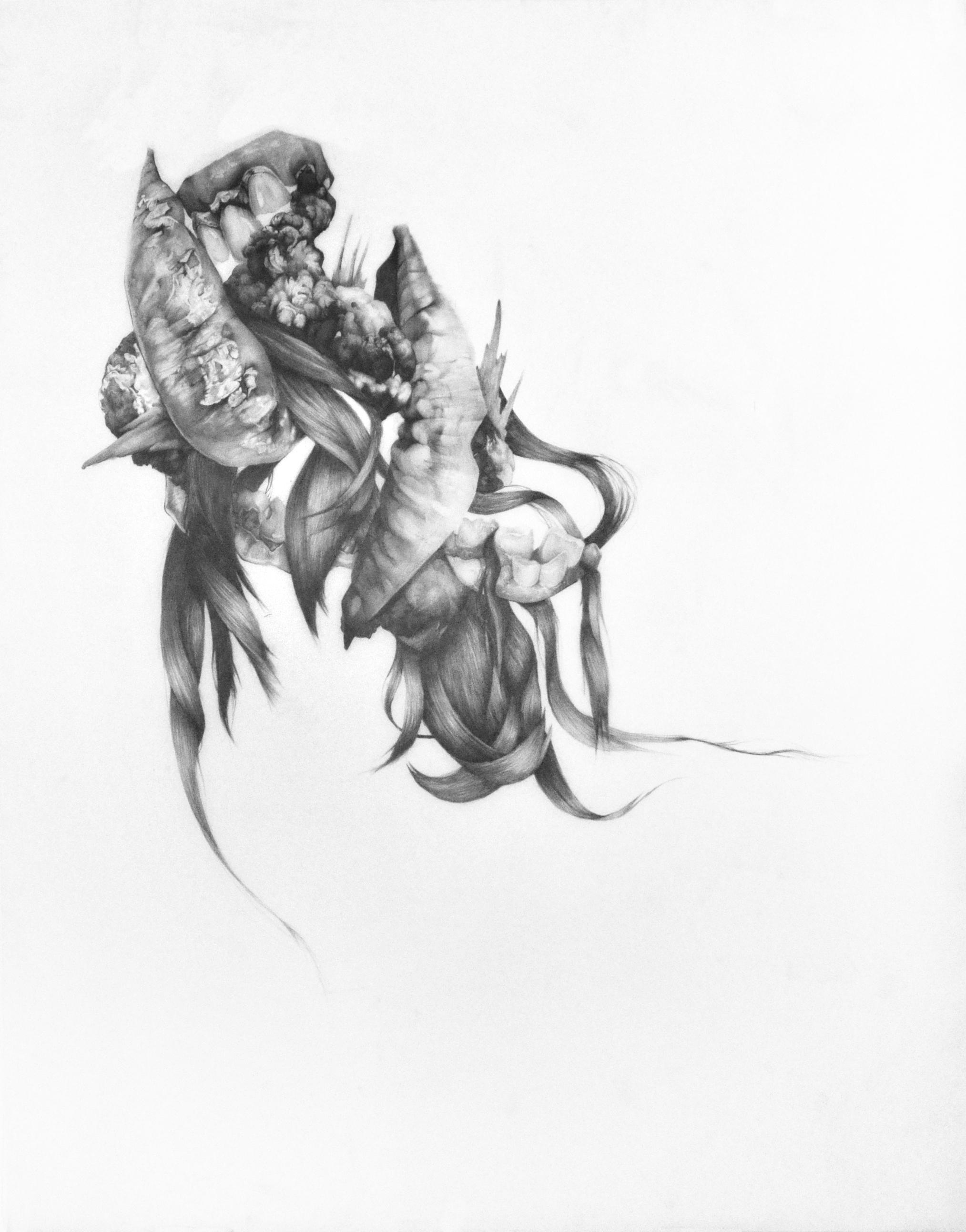 """Amalgamation #2 , Graphite on mylar, 50""""x39"""", 2017"""