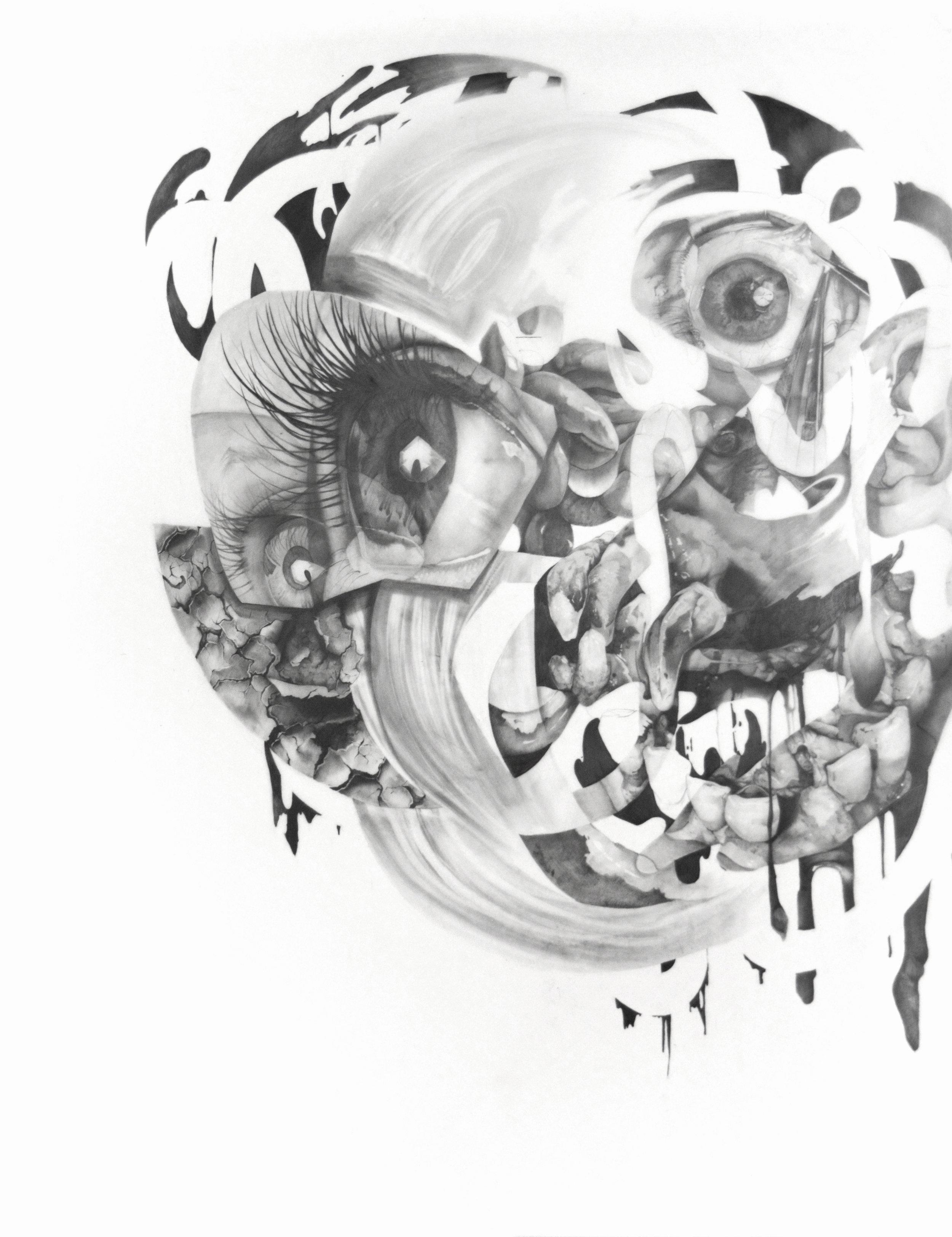 """Amalgamation #6 , Graphite on mylar, 50""""x39"""", 2017"""
