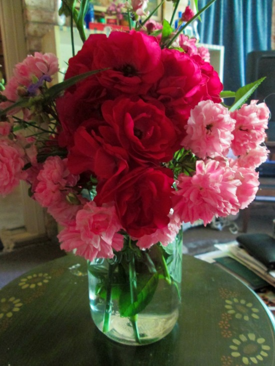 Roses may 2015.jpg