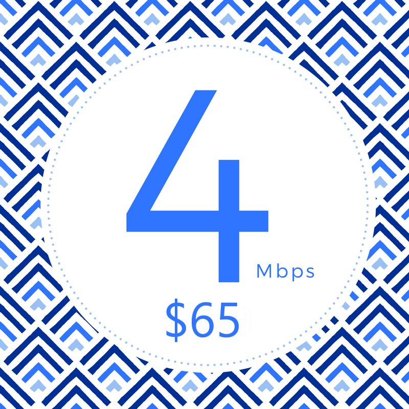 Perfect for streaming online video services.   • Stream HD Video  • Online Courses  • Surf the Web  and more  • Up to 4Mbps↓ 1.5Mbps↑  • Unlimited Data  • T.E.C. Plan