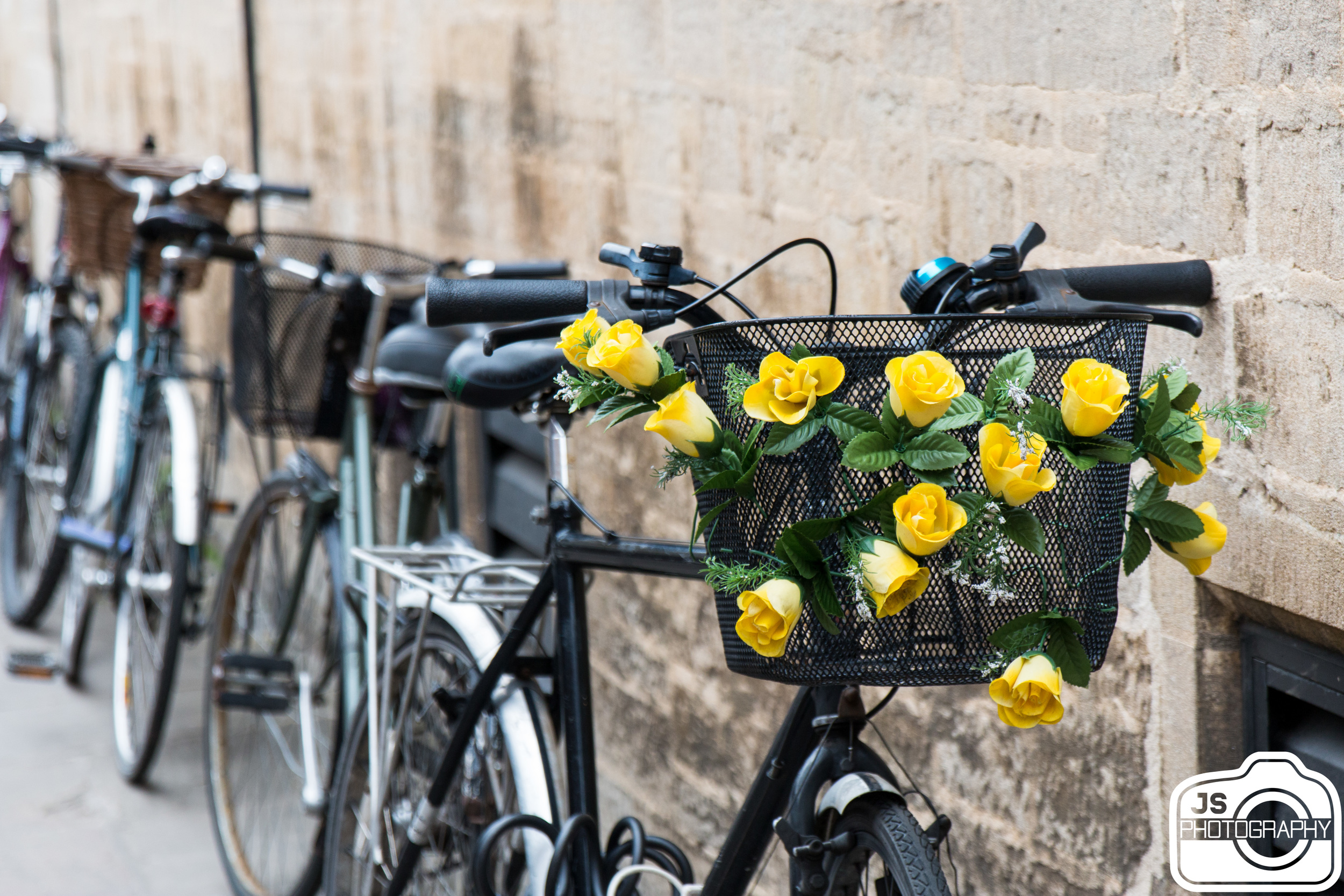 There are tons of people who bike in this city and they go fast! If you ever visit, be careful because they whip around the corners and zip through the streets. With that being said though, I did find this nice bike with flowers which I liked.