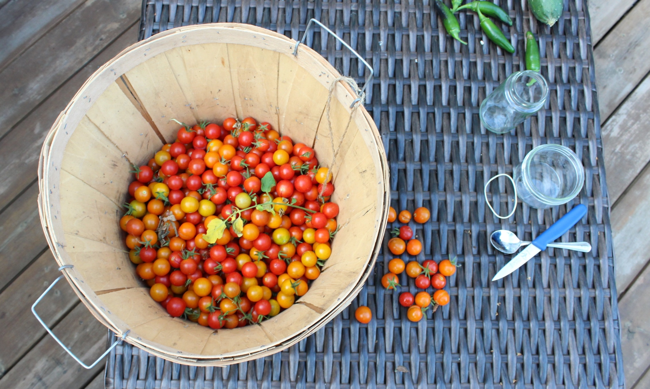 Today we seeded cherry tomatoes, cucumbers, and peppers
