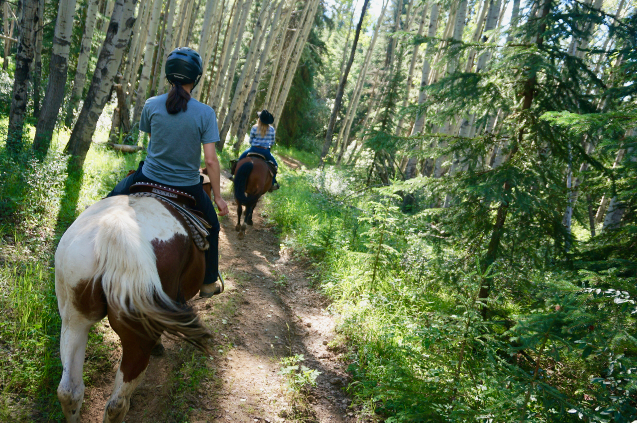 Jasper Riding Stables