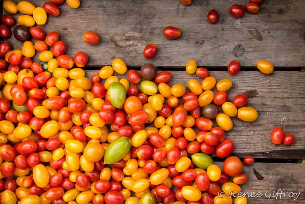 Tomatoes in Crate watermark.jpg