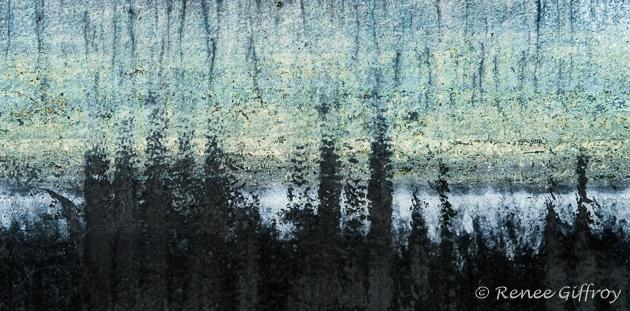 'Treetop View'