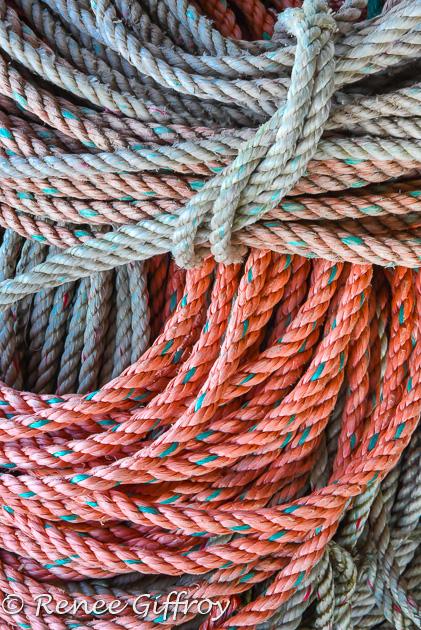 fishing ropes-1.jpg