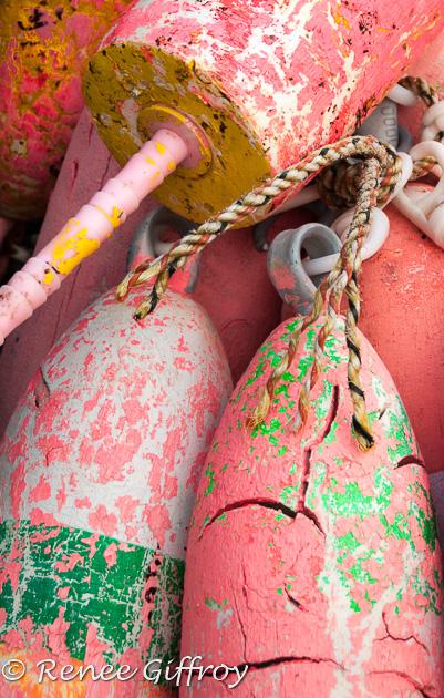 Pink Buoys-1.jpg