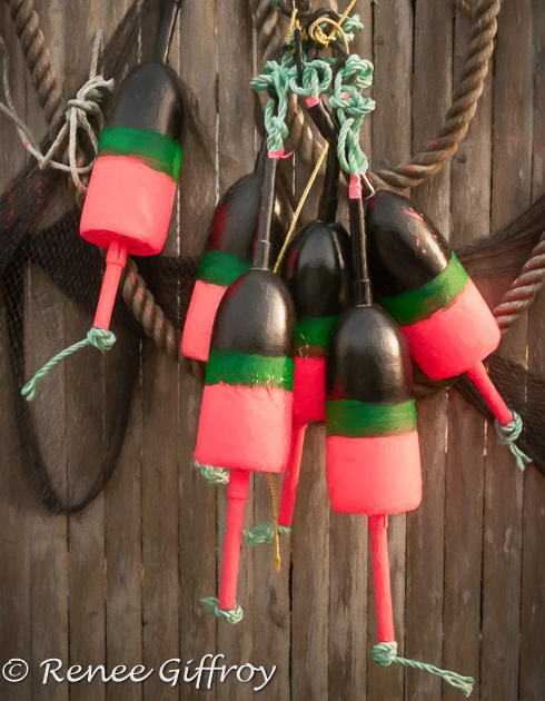 Buoys on the fence-1.jpg