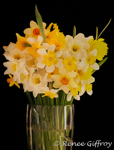 Vase of Daffodils for web-1.jpg