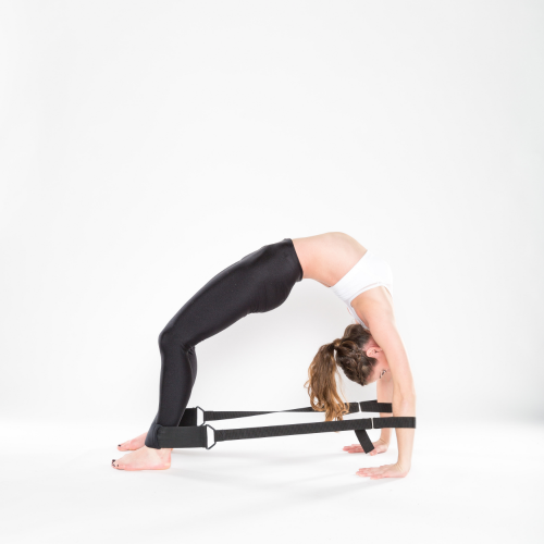 Flexistretcher Wheel Pose