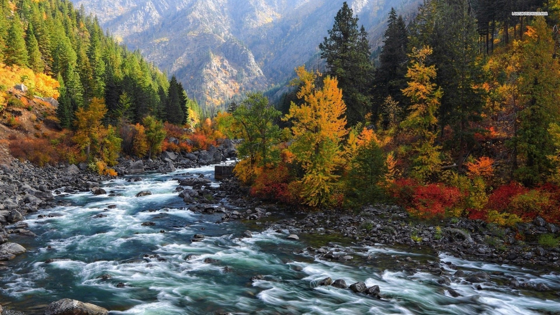 rapidly-flowing-river-in-the-mountains-1982-1920x1080.jpg