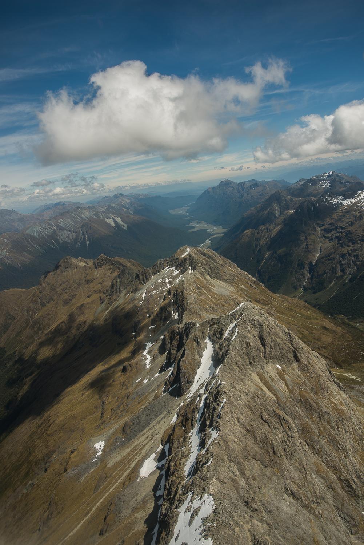 MNP_NZblog-6.jpg