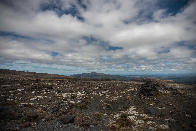 MNP_NZblog-24.jpg