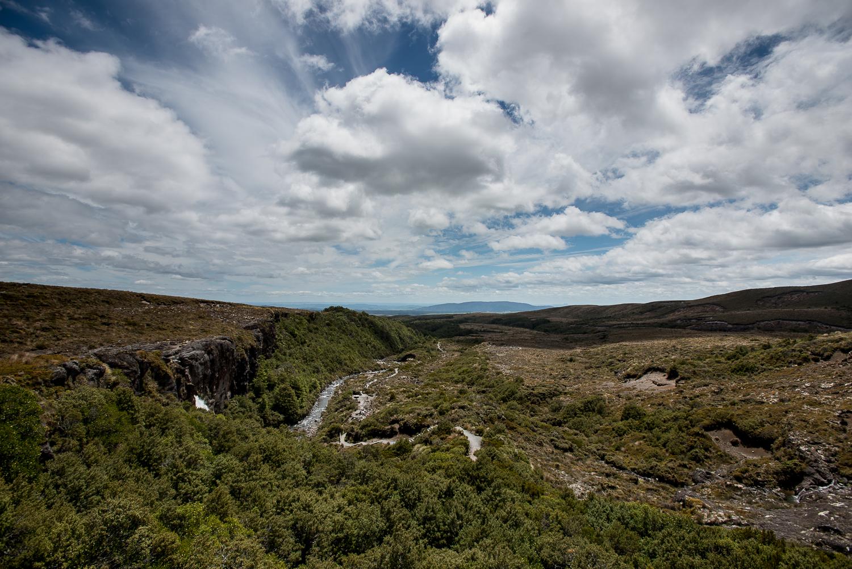 MNP_NZblog-28.jpg