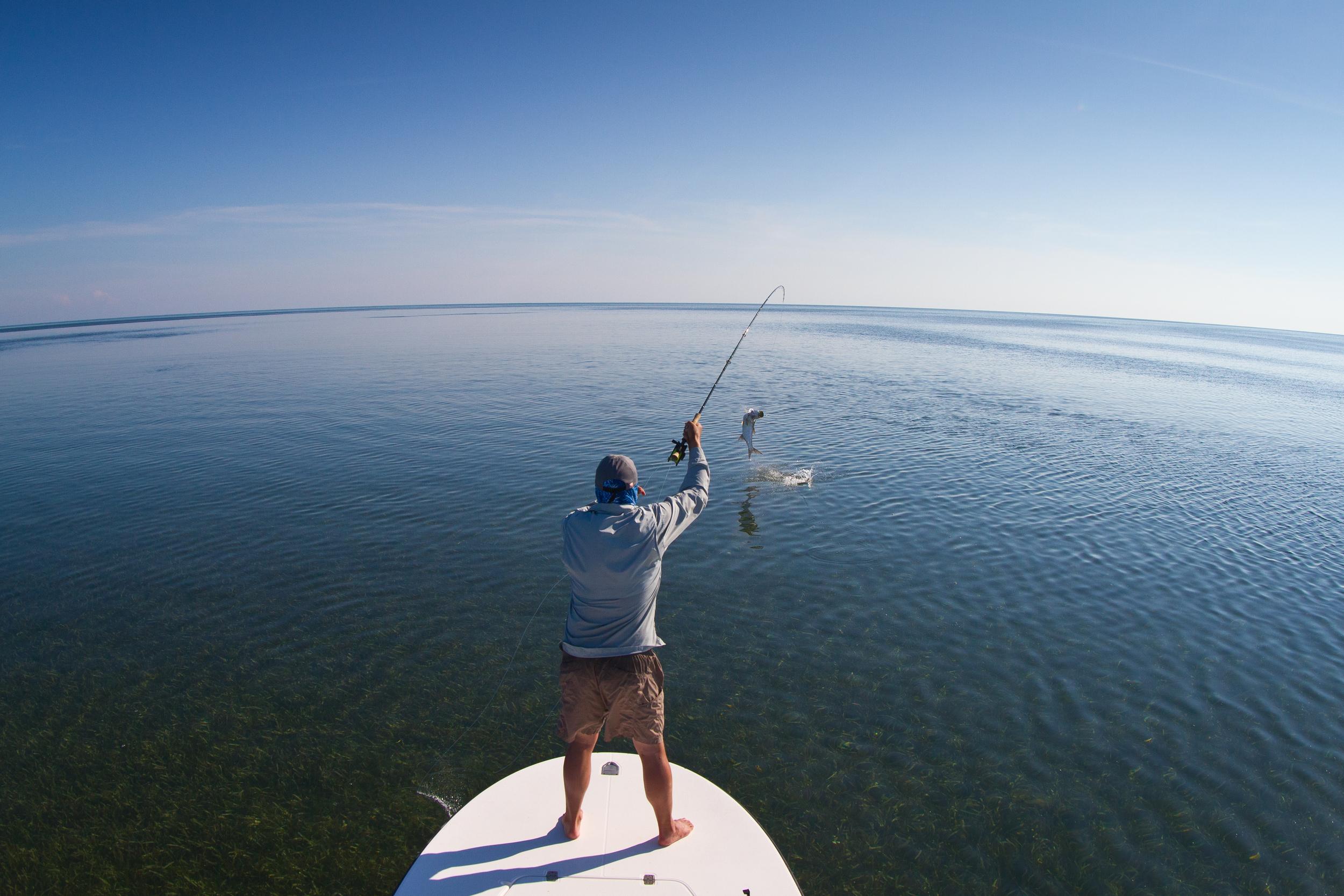 Fly Fishing for Tarpon, Jardines de la Reina, Cuba