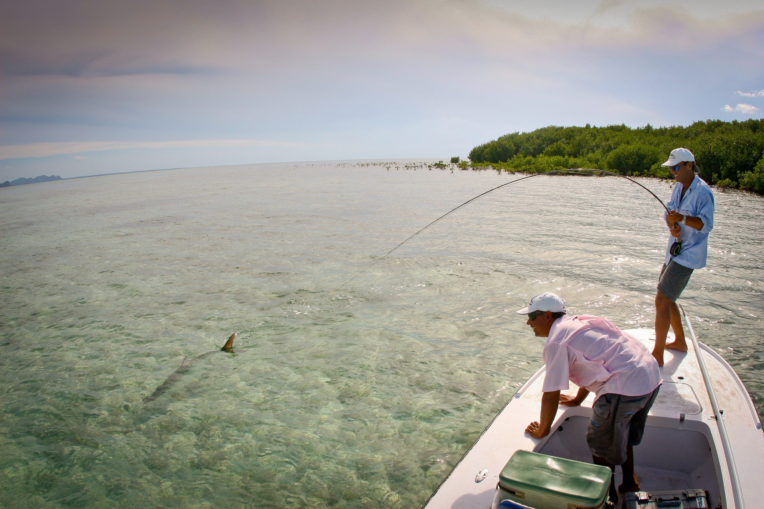 Fly Fishing for Tarpon, Isla de la Juventud, Cuba