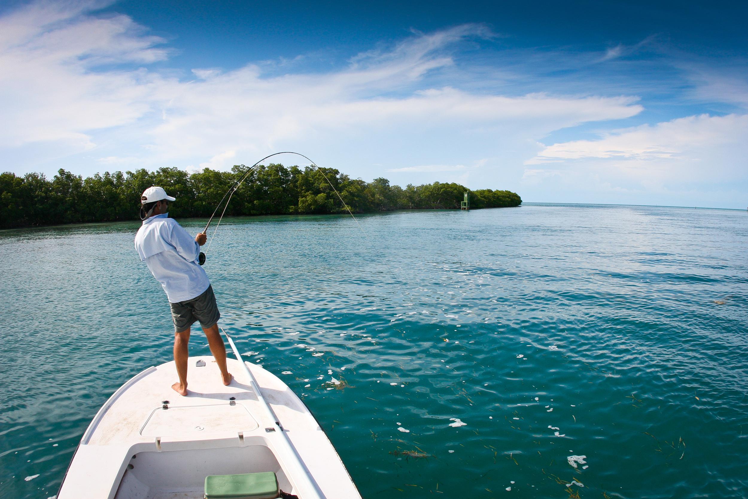Fly Fishing forTarpon,  Isla de la Juventud, Cuba
