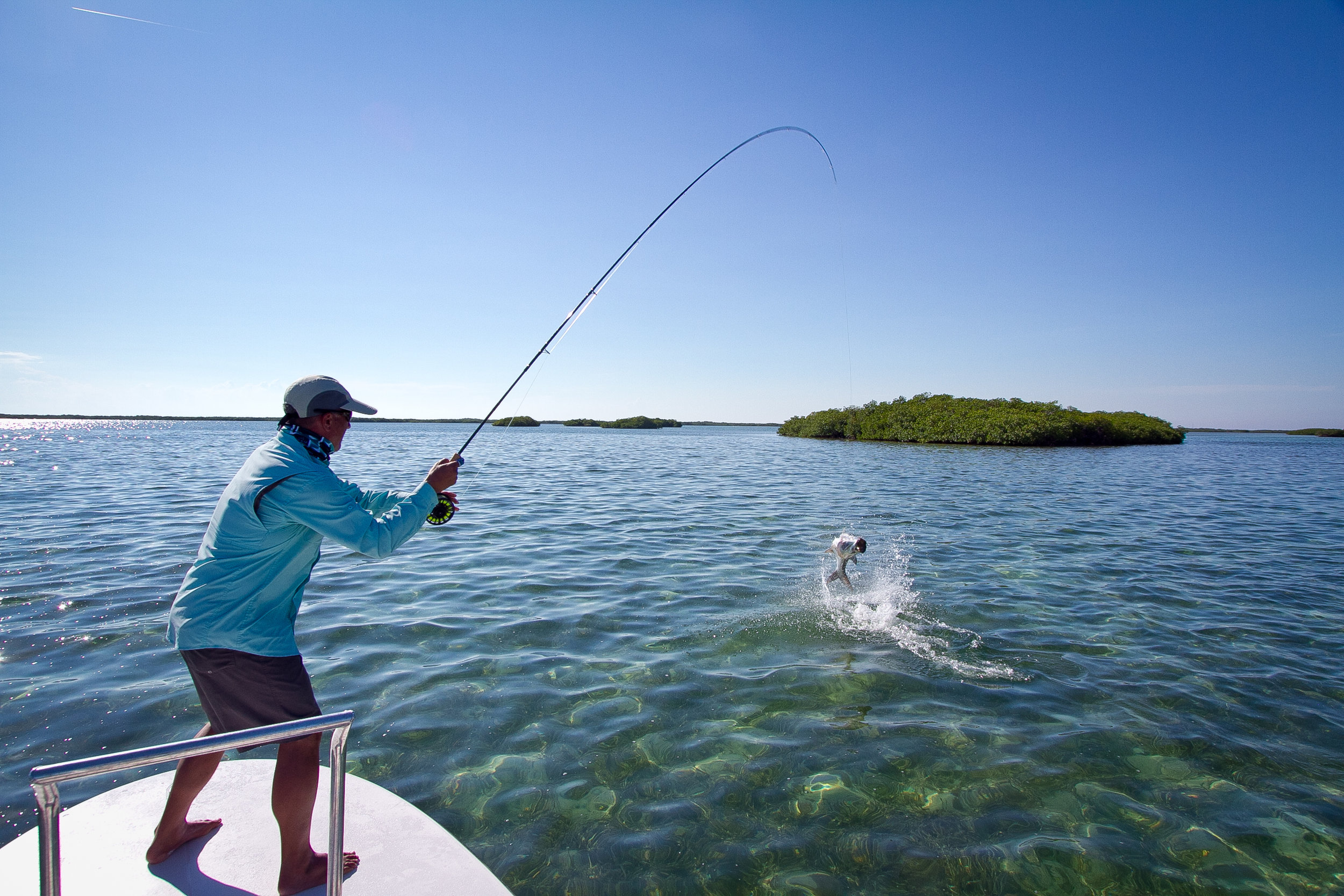 GARDENS OF THE KING is unique in Cuba, for having Tarpon in all sizes, all months of the year.