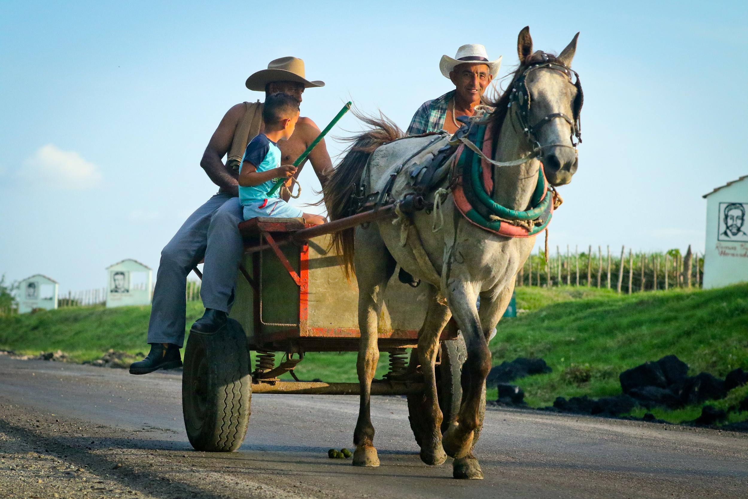 Horsecart on the Carretarra Central