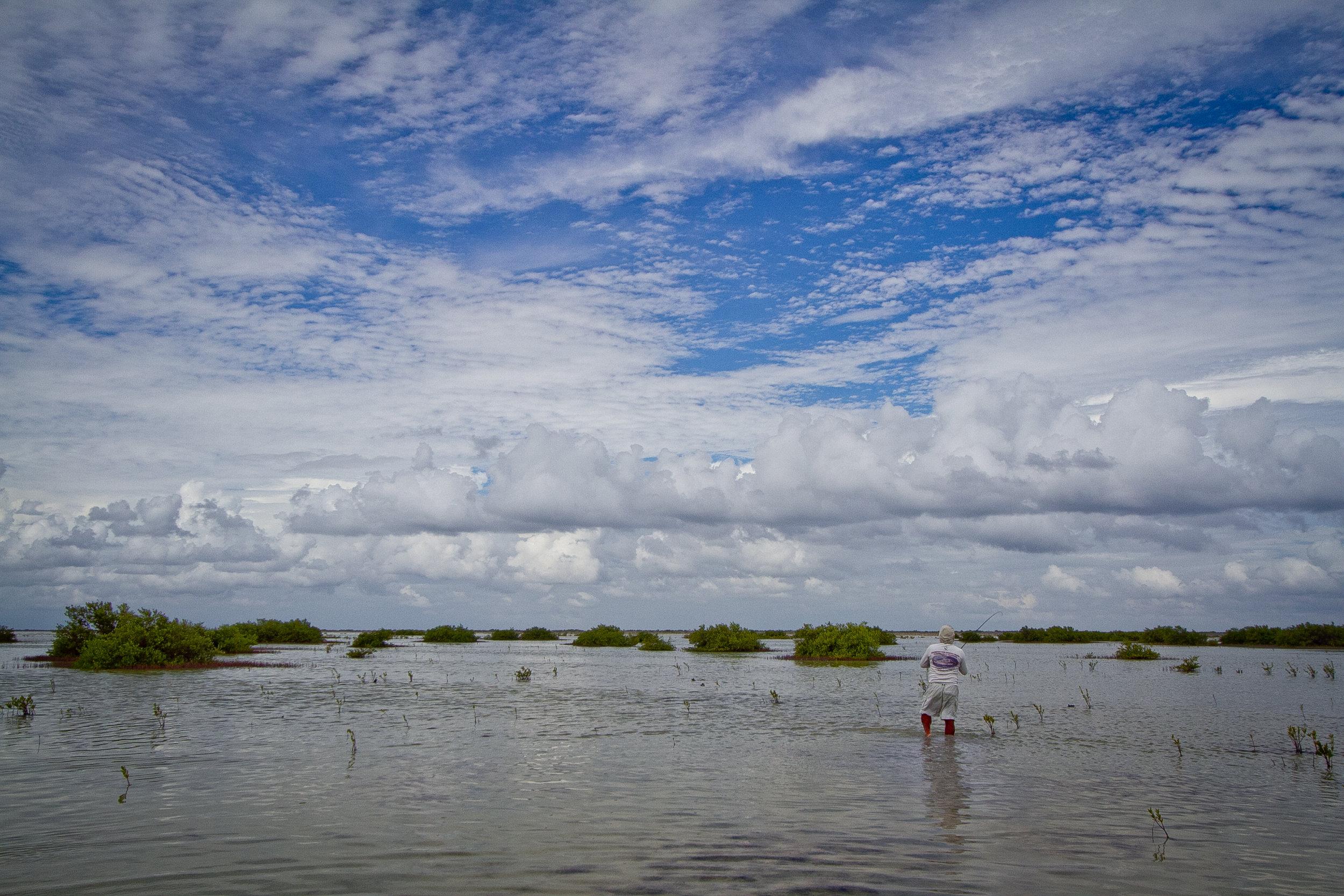 The massive Bonefish flats of Zapata