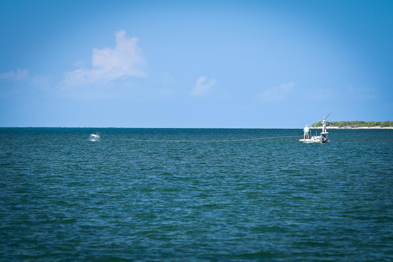 Tarpon fishing, Gardens of the Queen, Cuba