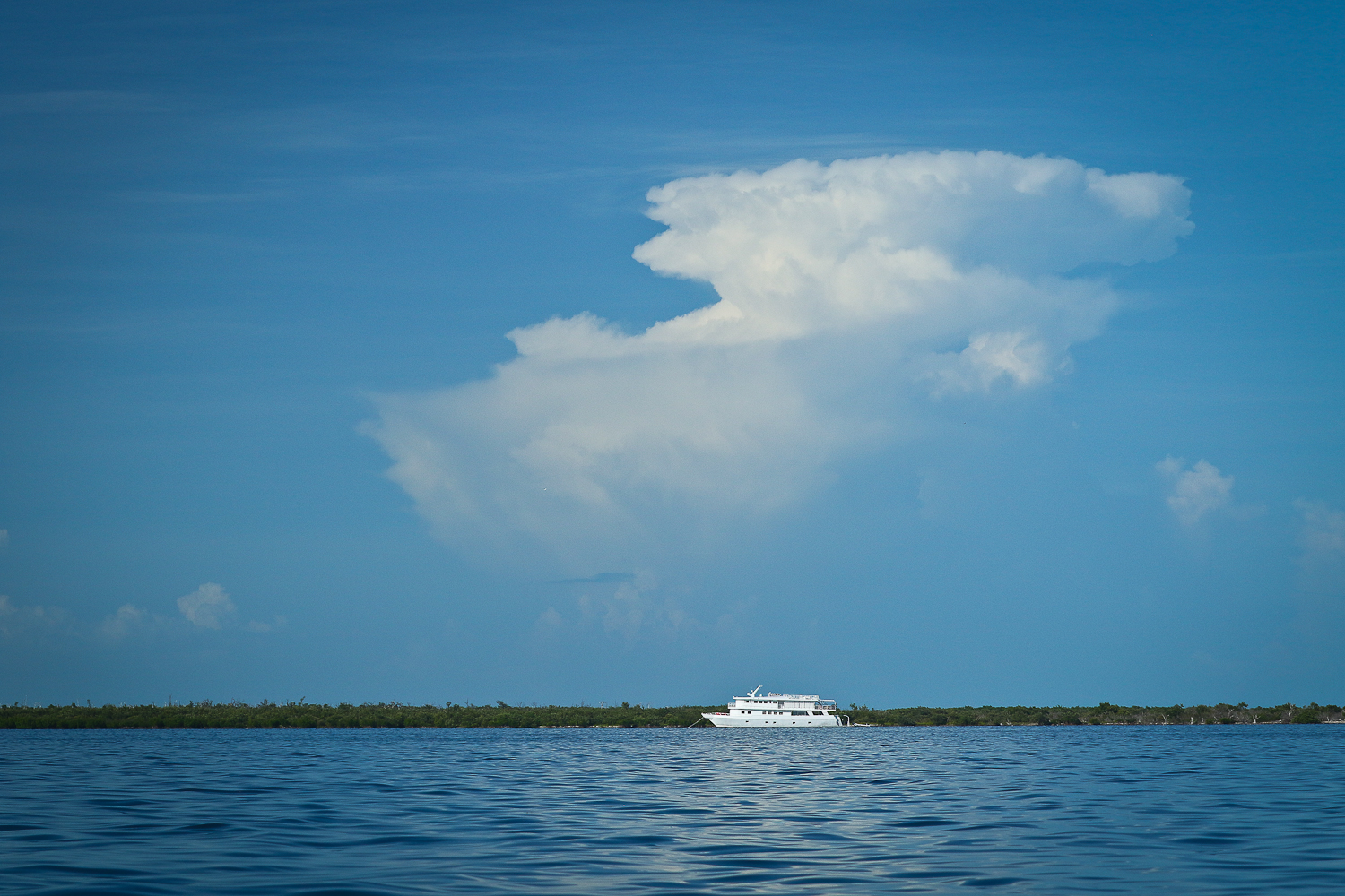 The Aggressor, moored in a Channel surround by Tarpon habitat