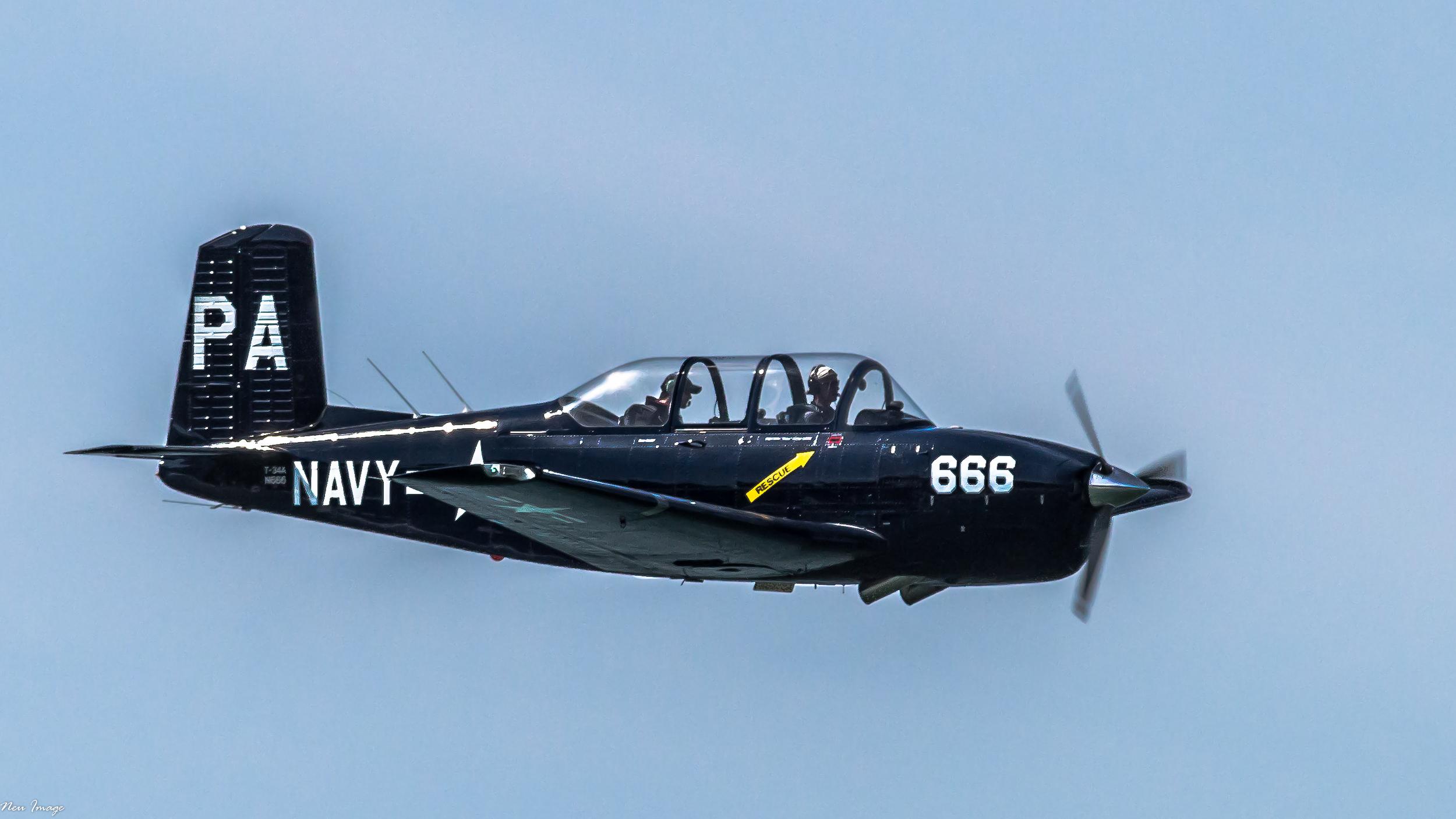 navy 666.jpg