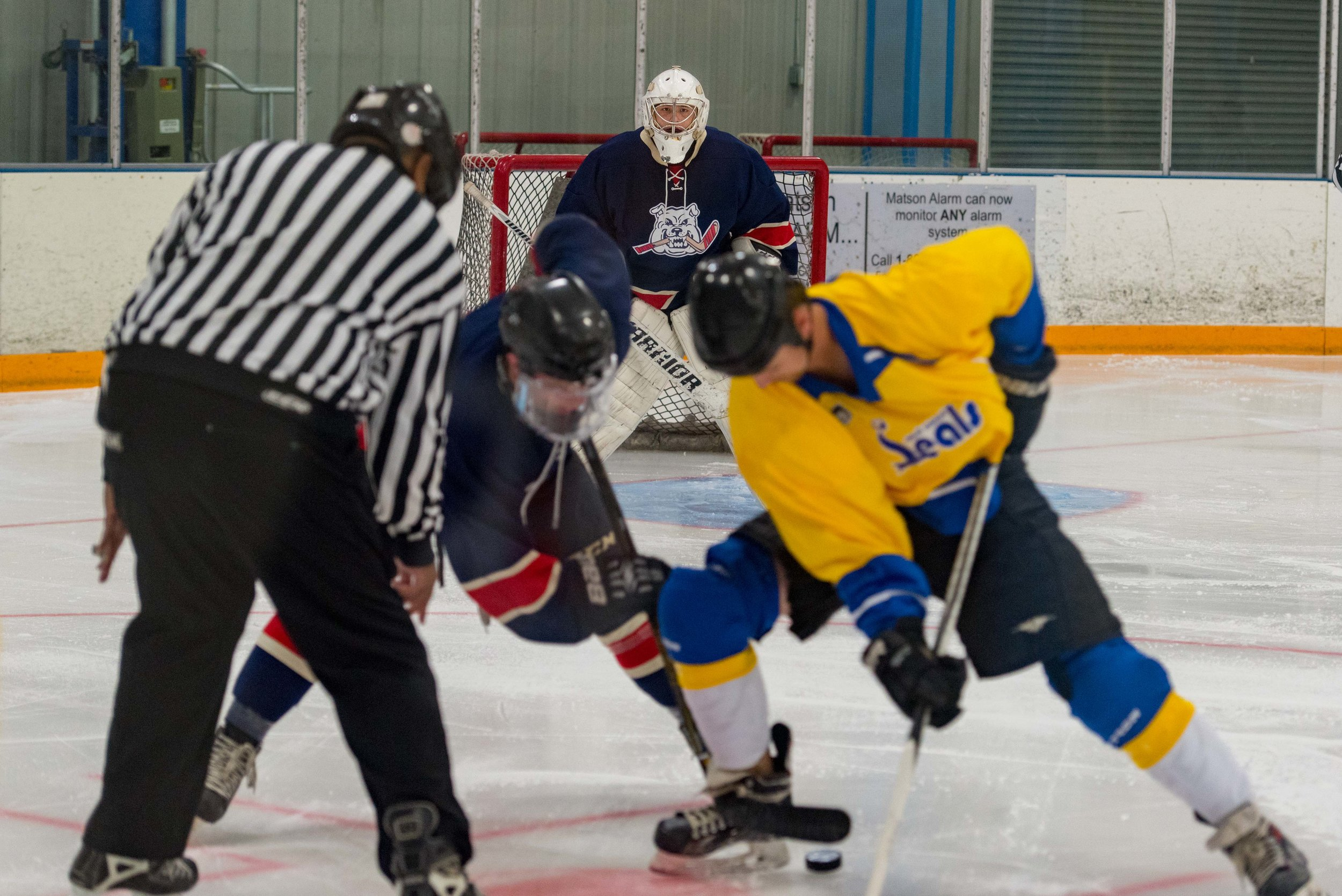 Ice dogs v WC Seals 10-13-17-39.jpg