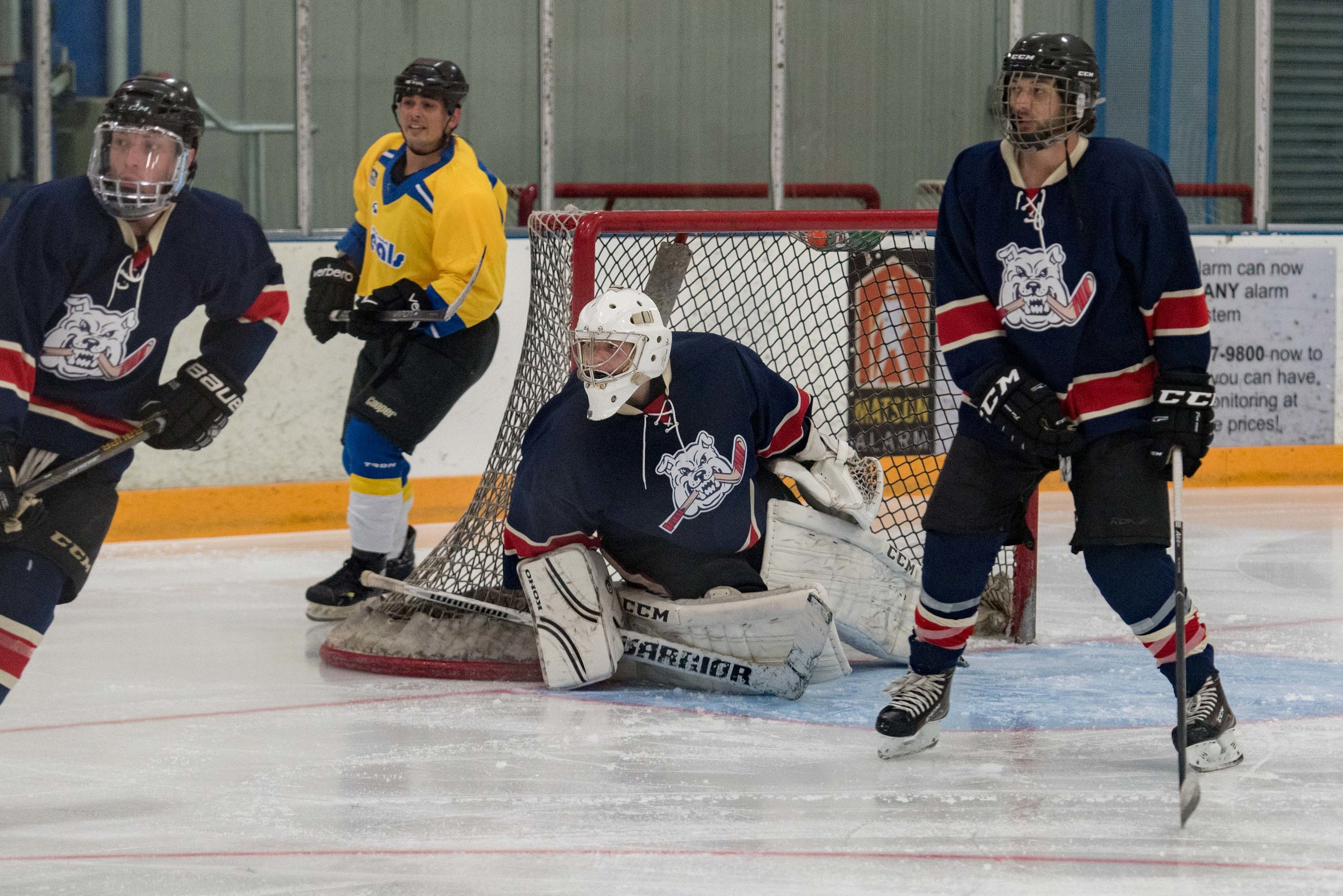 Ice dogs v WC Seals 10-13-17-40.jpg