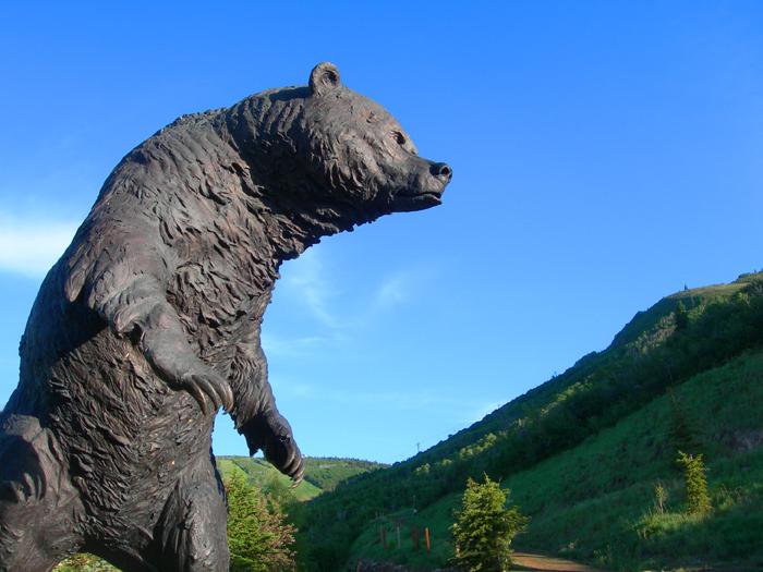 Big bear / Park City, UT