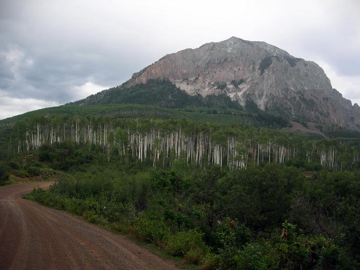 Gunnison National Forest / Colorado